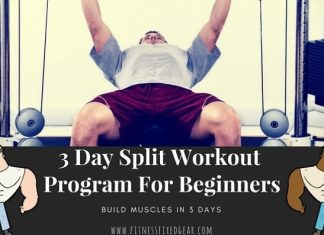 3 day split workout program for beginners